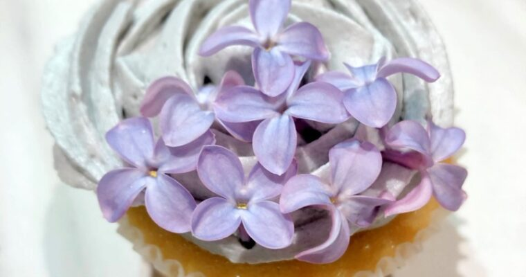 Lilac Cocktail and Lilac Cupcake Recipes
