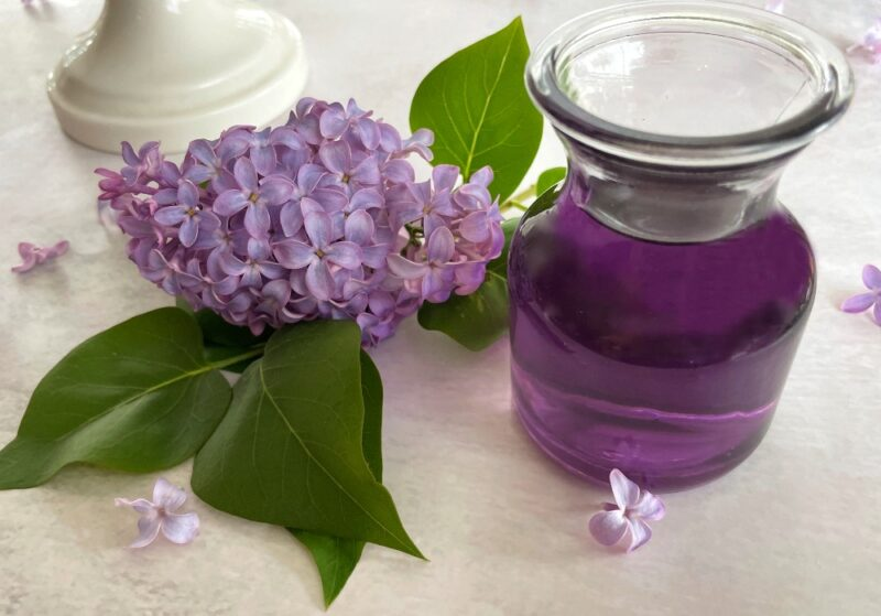 lilac syrup and fresh lilac flowers