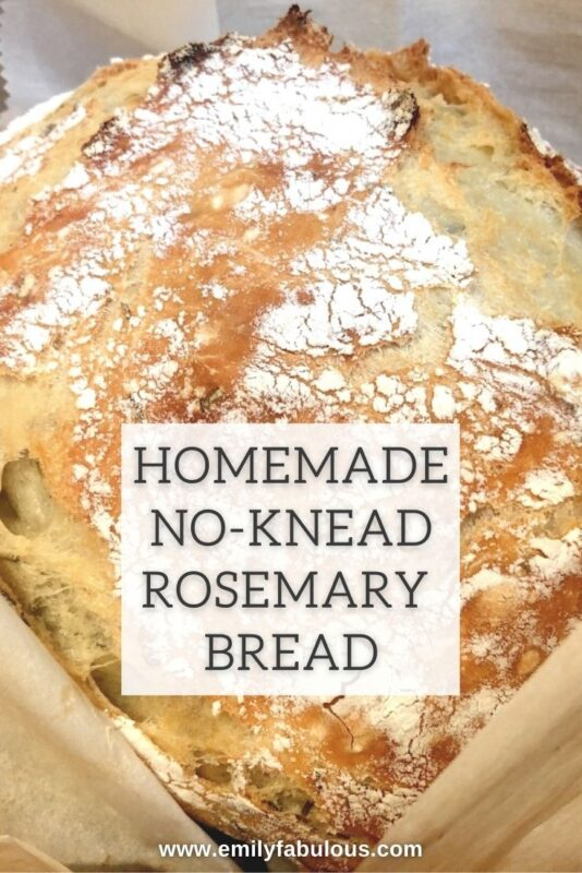 a round loaf of no knead rosemary bread on parchment paper