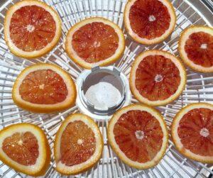 orange slices on a dehydrator