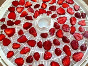 strawberry slices on a dehydrator tray