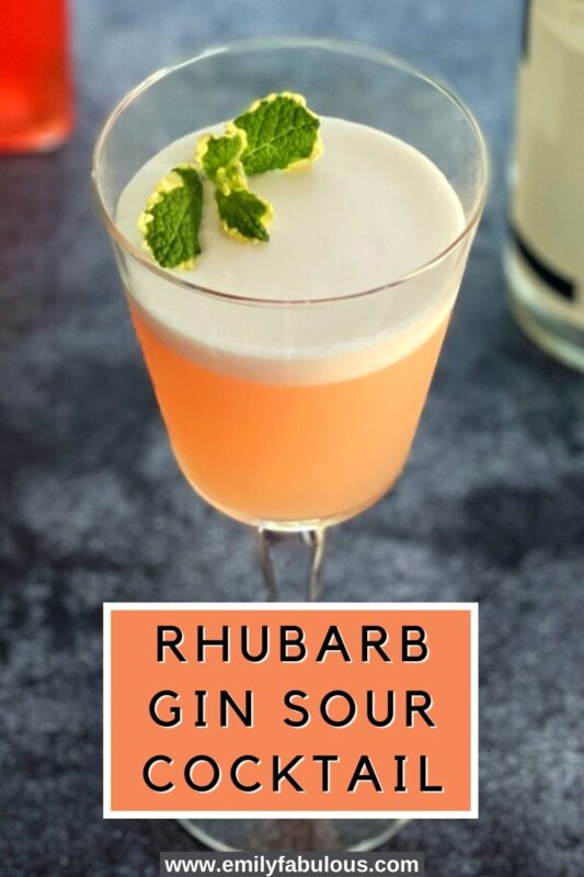 a rhubarb gin sour cocktail in a coupe glass with a fresh mint sprig as garnish